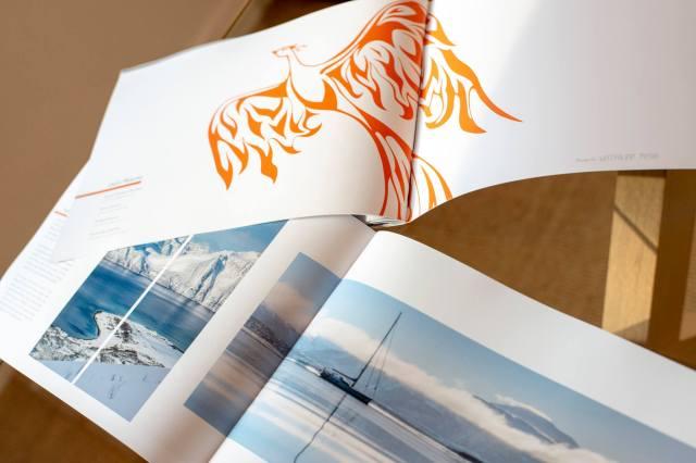 firebird_brochure